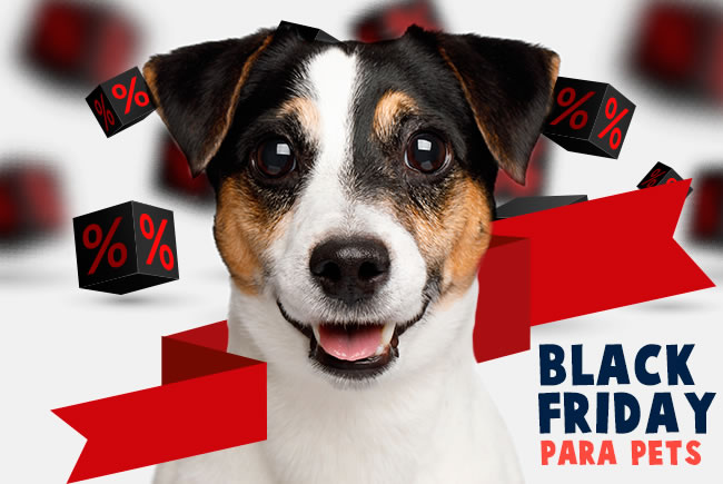 Black Friday para pets
